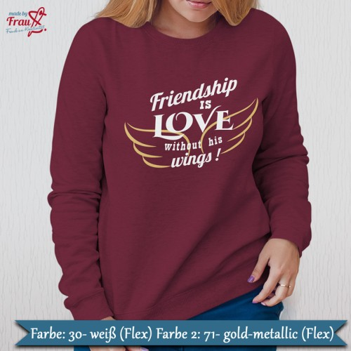 Friendship is love without is wings Bügelbild - Pulli