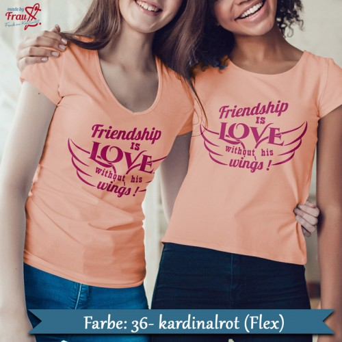 Friendship is love without is wings Bügelbild - Freunde Shirt